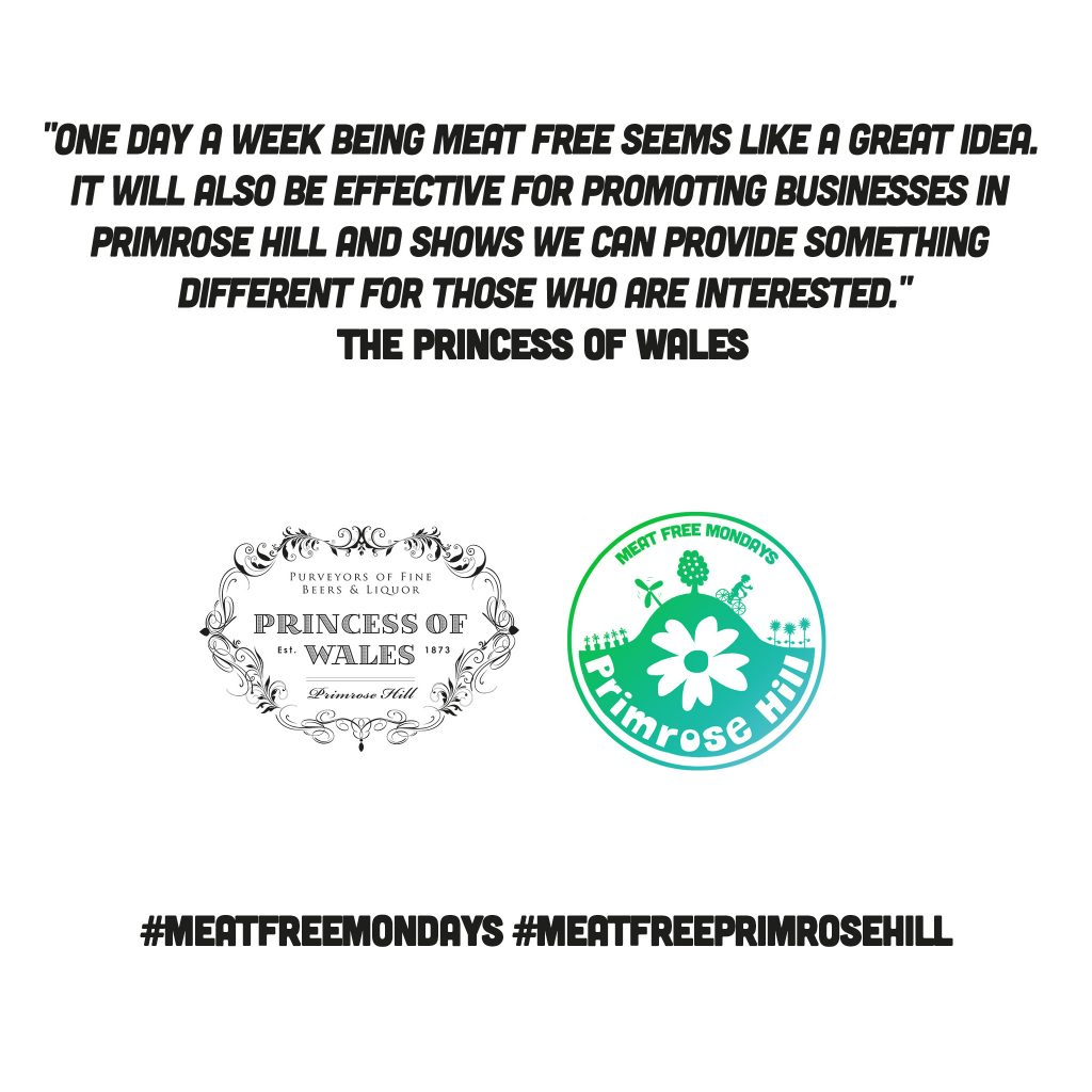 The-Princess-of-Wales-MFM-Primrose-Hill